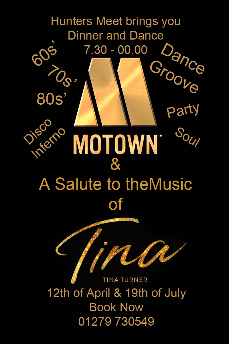 MOTOWN & TINA TRIBUTE